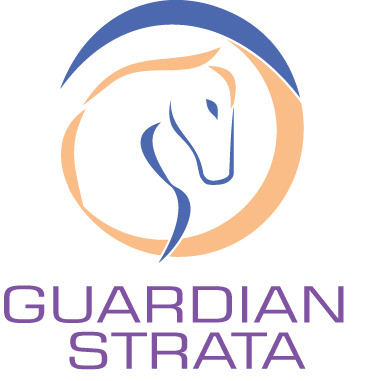 Guardian strata mid size logo